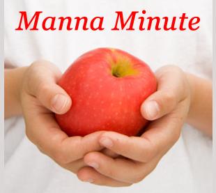 Manna Food image 3