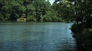 Lake Needwood picture