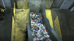 Image of plastic bottles moving through curte at recycling facility.
