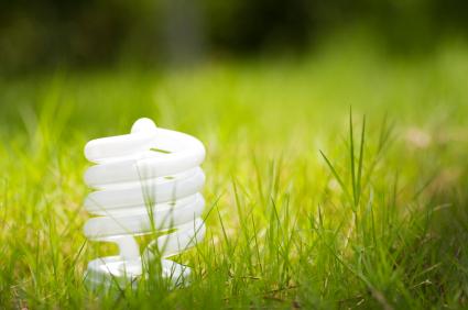 Image of energy saving lightbulb in grass