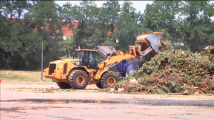 Tree debris removal equipment after June 29 storm