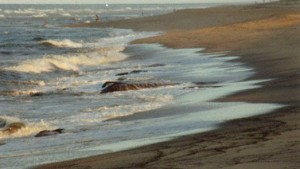 image of beach at Cape Cod
