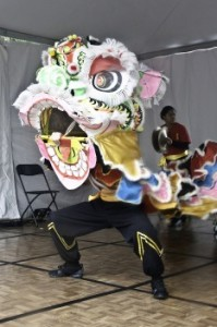 Wong Chinese Lion Dancers
