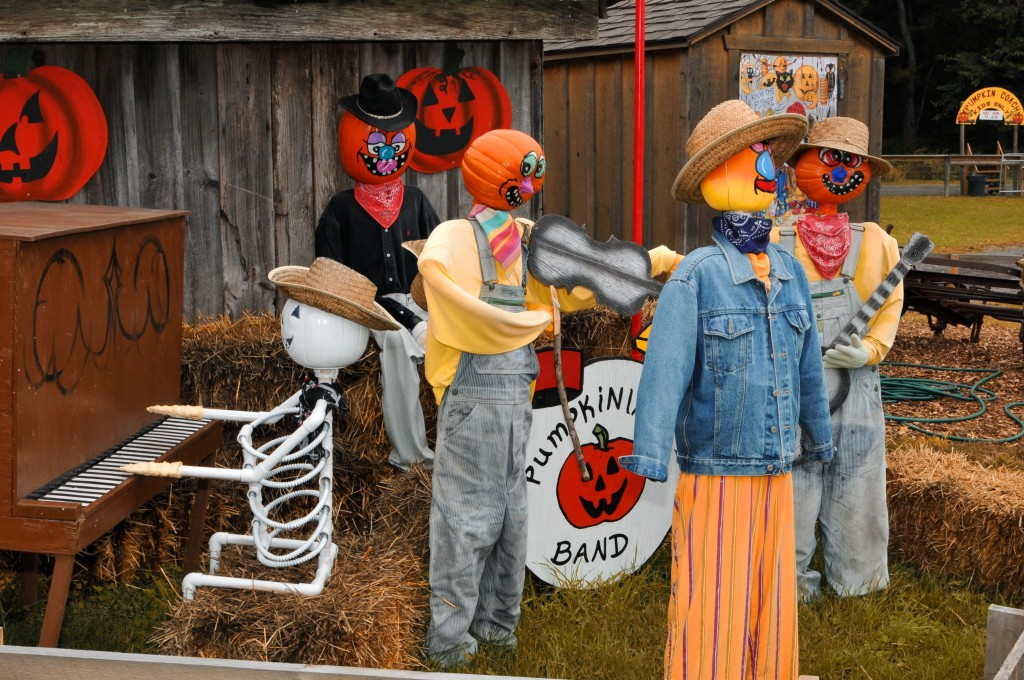 A local band performs at Butler's Orchard.