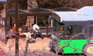 Ride on bus photo