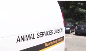 Animal Services MoCo Van