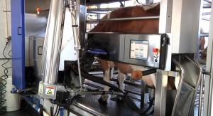 Woodbourne Creamery robotic milking machine