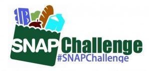 SNAP Challenge image