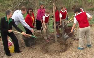 Rockville Tree Planting