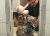 Animal Care Supervisor Spencer Kelly