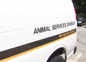 animal services van