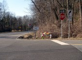Flowers at Intersection of River Road and Pyle Road Bethesda Fatal Accident Scene 4 pm 2_18_16 v3