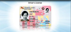 MVA Drivers License 1