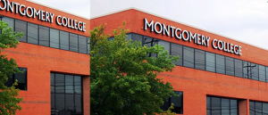 Montgomery College Celebrates Scholars and Donors for slider 855 x 380
