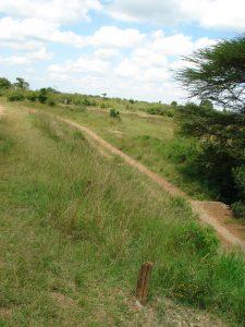 pathways-blog-image2