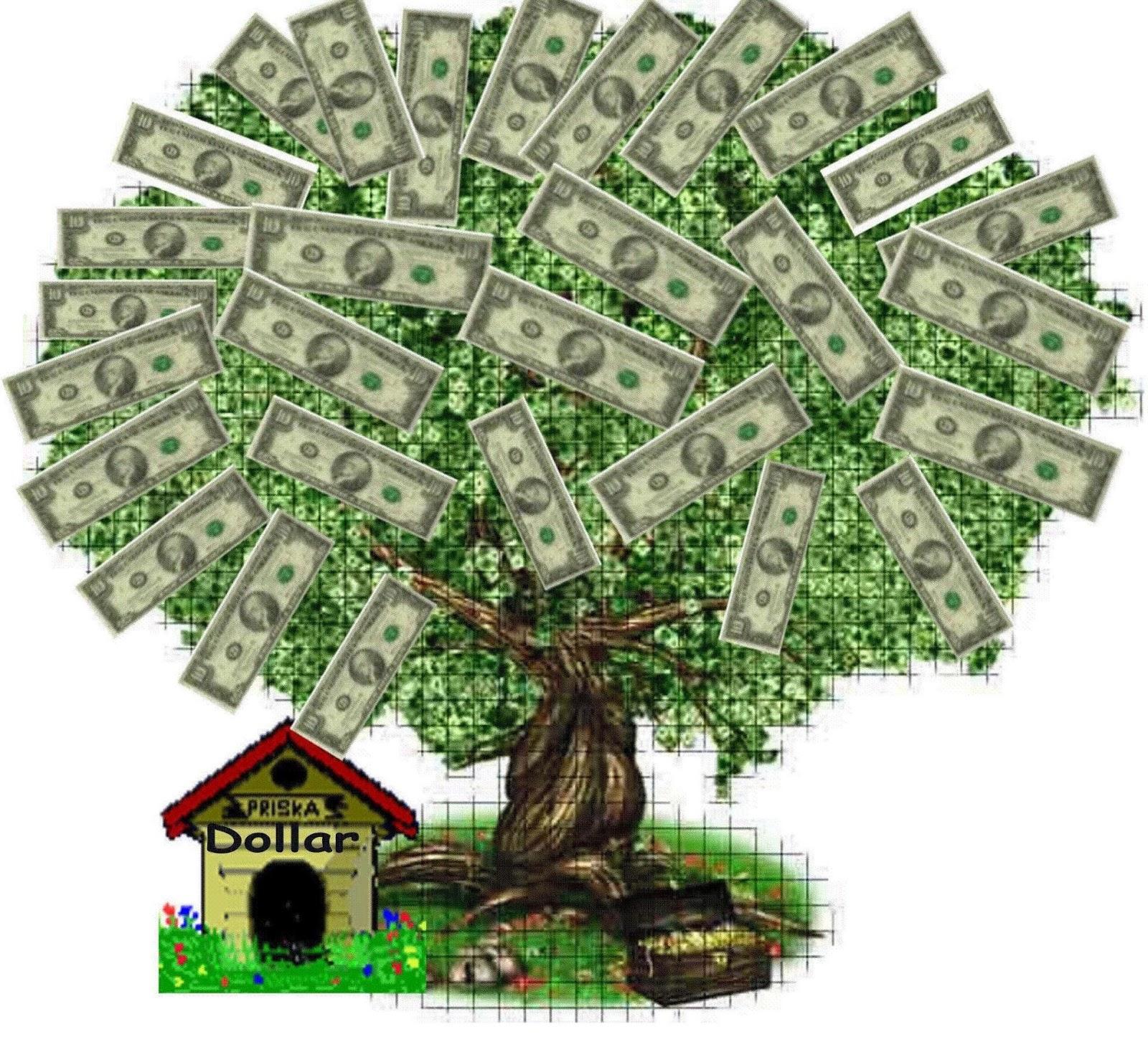 The Money Tree Montgomery Community Media