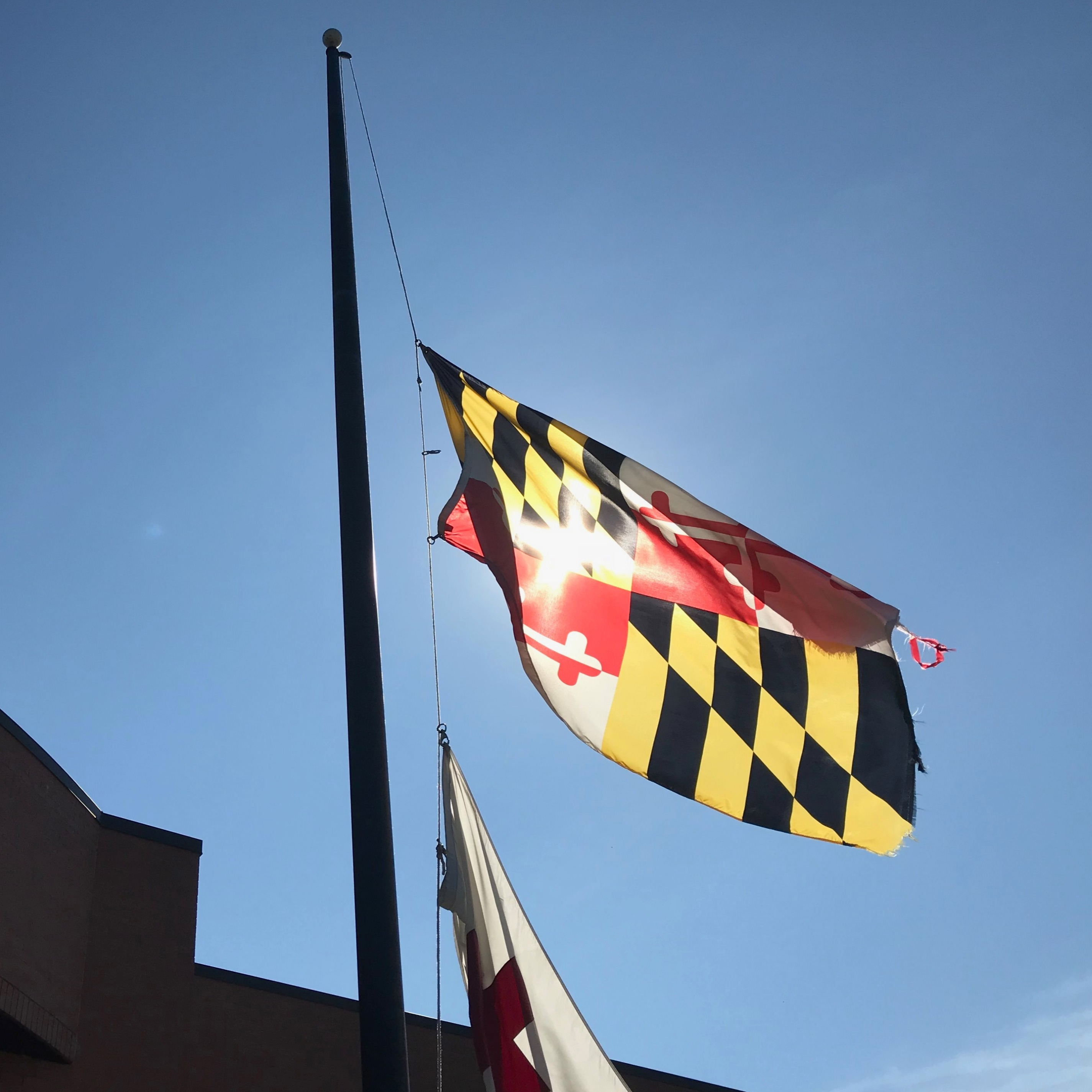 Hogan Orders Flags at Half-Staff to Honor Maryland National