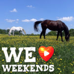 We Love Weekends: Montgomery County Planner for May 17-May 19