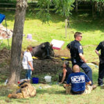 A Ton of Trouble: 2,000-Pound Steer Extricated From Mud in Boyds