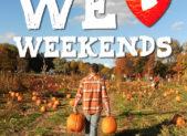 we love weekends pumpkin picking WLW_38_WEB