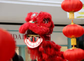 feature lunar new year