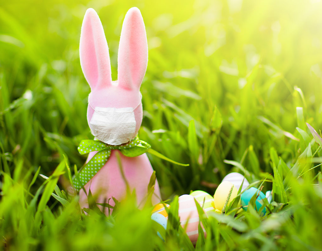 Hogan Makes Easter Bunny 'Essential Worker' in Maryland ...