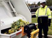 food scraps compost featured