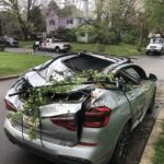 Early Morning Storm Wreaks Havoc in Bethesda Neighborhood