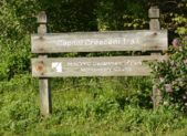 featured - Capital Crescent Trail