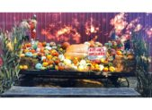 featured image - fall festival butler's orchard