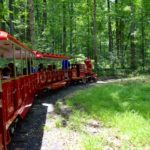 All Aboard: Trains at Cabin John and Wheaton Now Open
